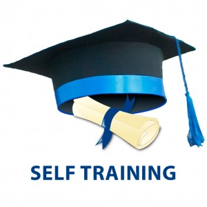 Logo-Self-Training-703-703
